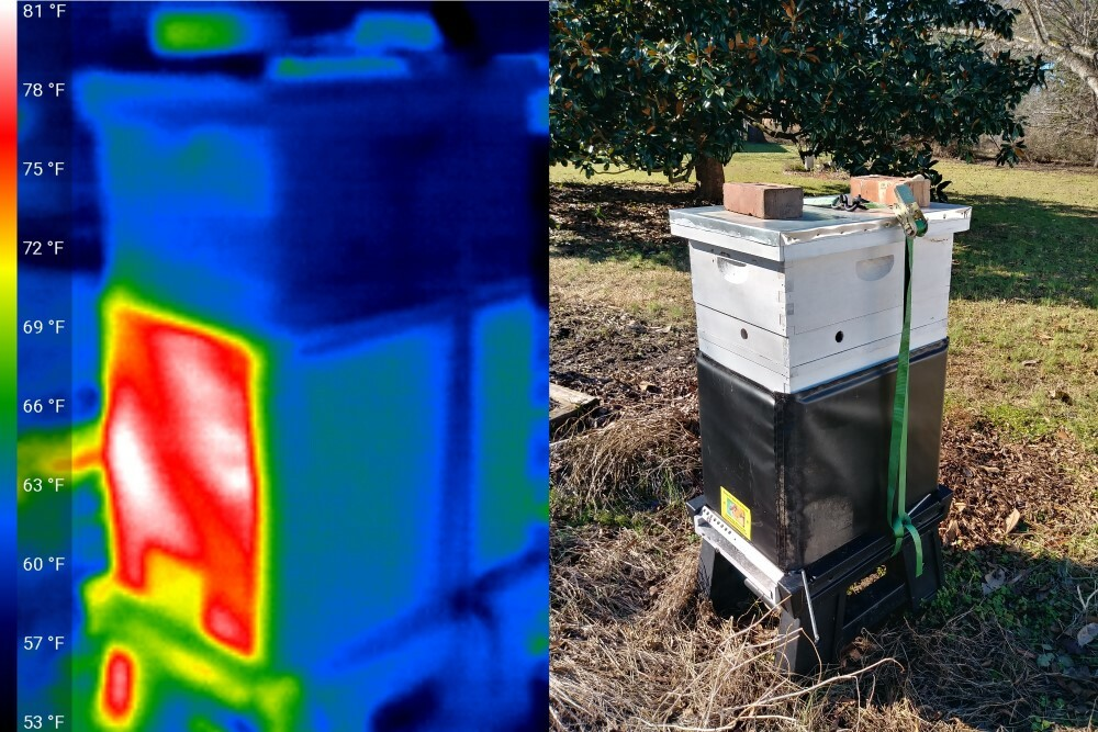 Side by side image:  IR/ normal insulated hive