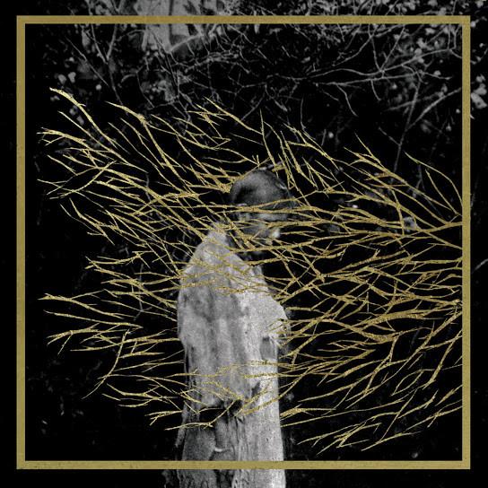 Forest Swords - Engravings, album art.
