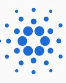 Symbol of the Cardano cryptocurrency