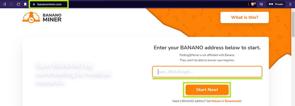 Bananominer - get your name - udinxyz
