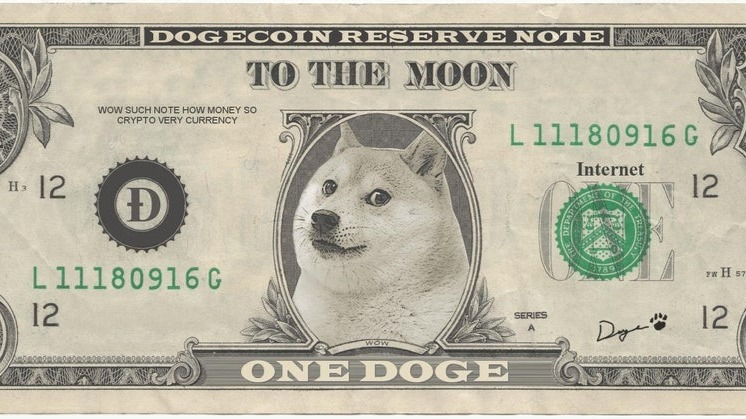 us dollar with doge image instead of a president