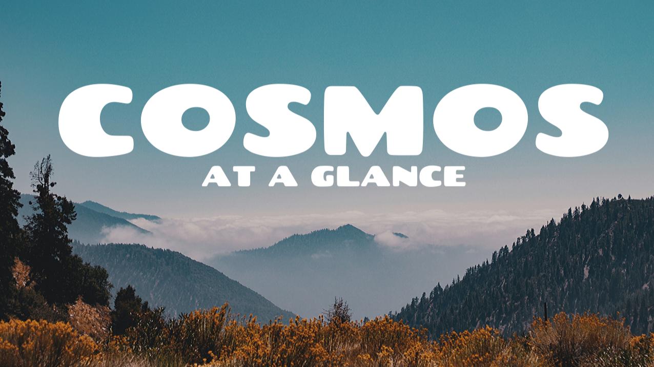 Cosmos (ATOM) at a glance