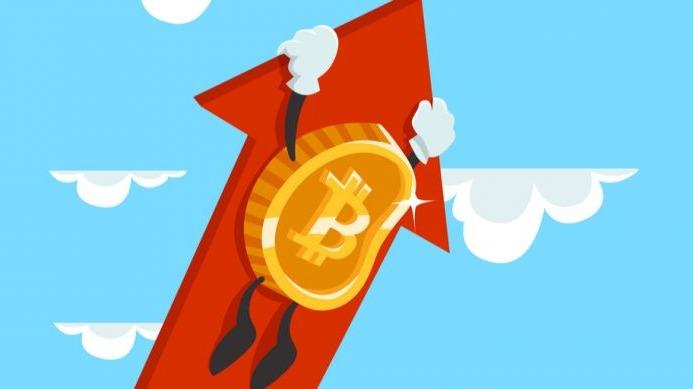 A large view of bitcoin - Bitcoin Price Analysis