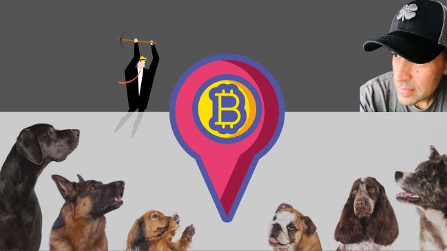 Stepdad Crypto Dogs