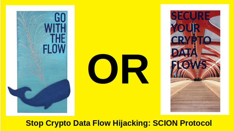 SCION Protocol to Protect Crypto Data Flows between Providers