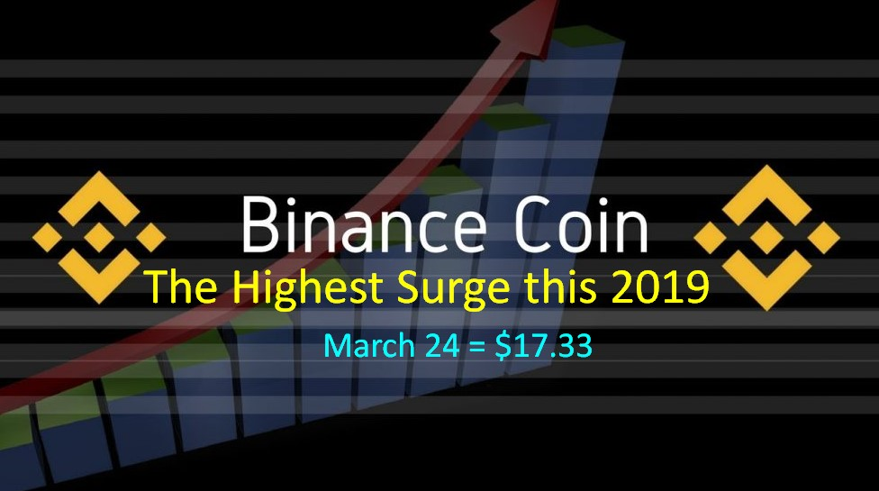 The Sudden Surge Of Binance Coin (BNB) - Are You Aware Of It?