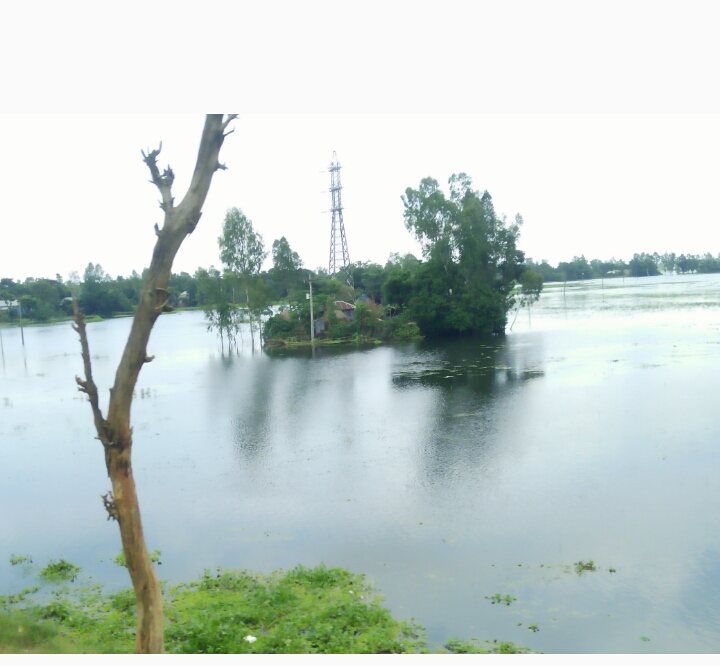 Naturally beautiful Bangladesh