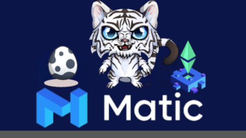 Blockchain Cuties just added Matic chain. Can the Matic layer 2 solutions solve Ethereums slow and high cost tx?