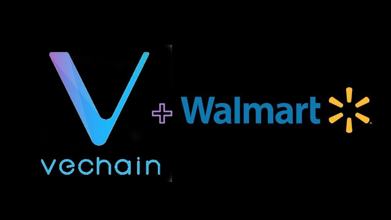 VeChain Is One Of The Few Projects That Will Come Out as a Winner From Crypto Bubble