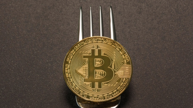 Bitcoin Forks Explained