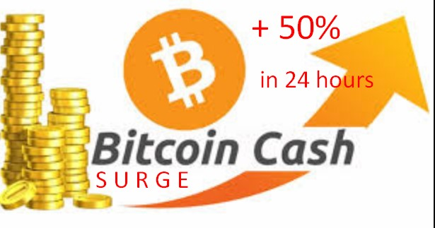 Bitcoin Cash Surge in 24 Hours Today - Astounding 50%