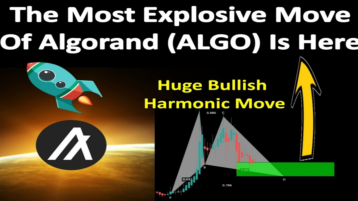 The Most Explosive Move Of Algorand (ALGO) Is Here