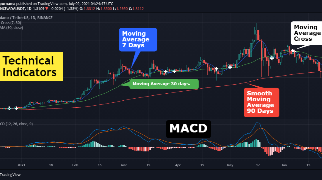 Technical Indicators in Trading View