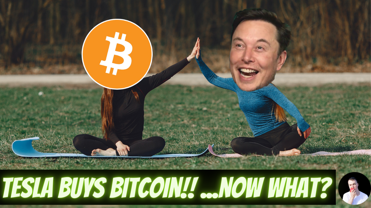 Tesla Buys Bitcoin!! ...Now What?