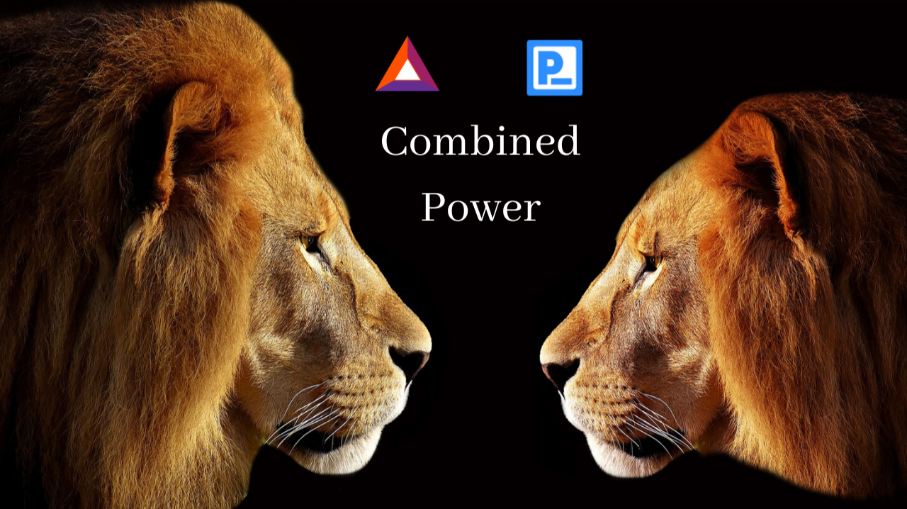 Brave Browser and Preserach