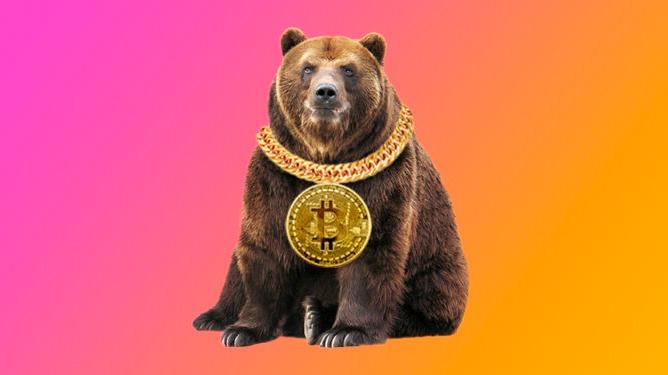 Bitcoin bear market.
