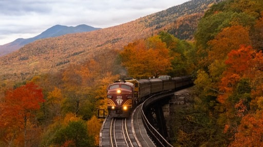 fall leaves and train