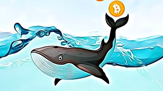 $ 85 million in the EOS cryptocurrency moved the whales today in two transfers.