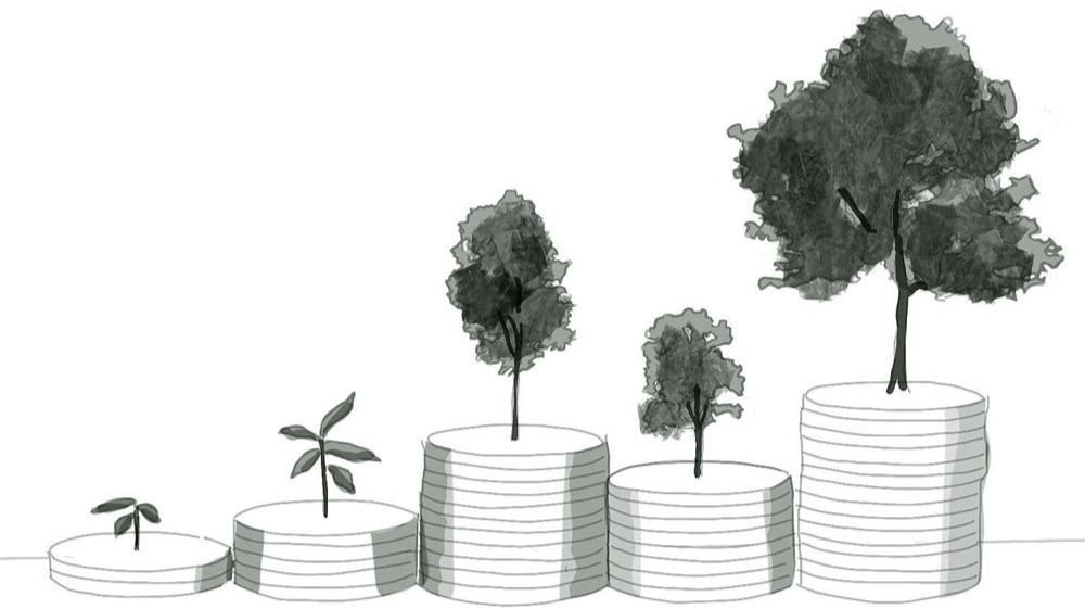 AMPL's Visualisation of Rebasing