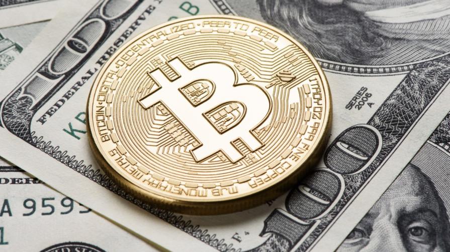 Bitcoin or Dollars?