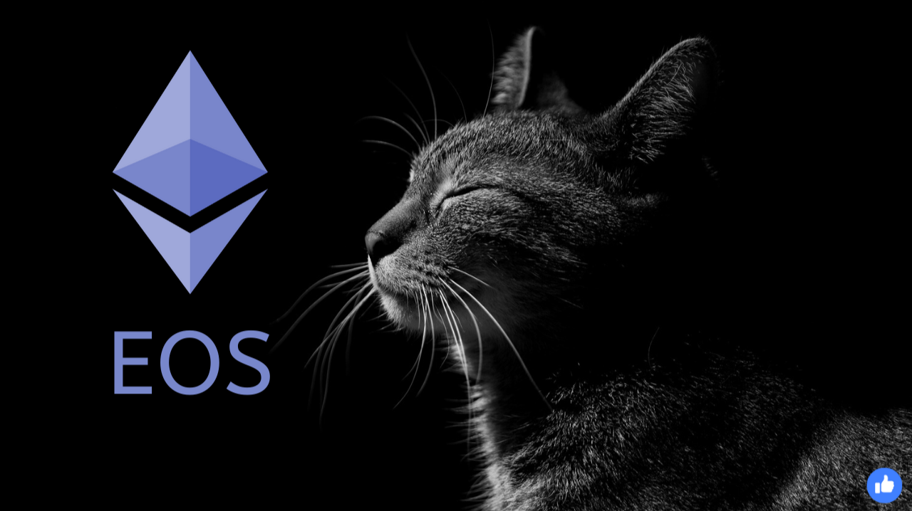what is eos cryptocurrency