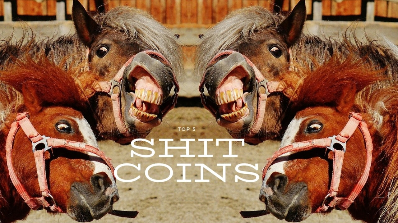 shitcoins