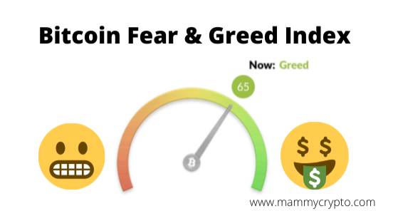 www.mammycrypto.com created using Canva