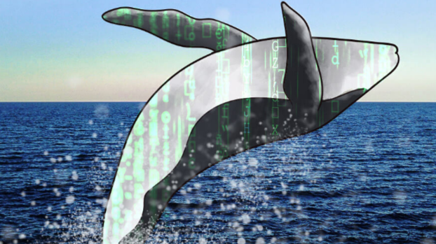 The Whales start September with a force pushing the market crypto