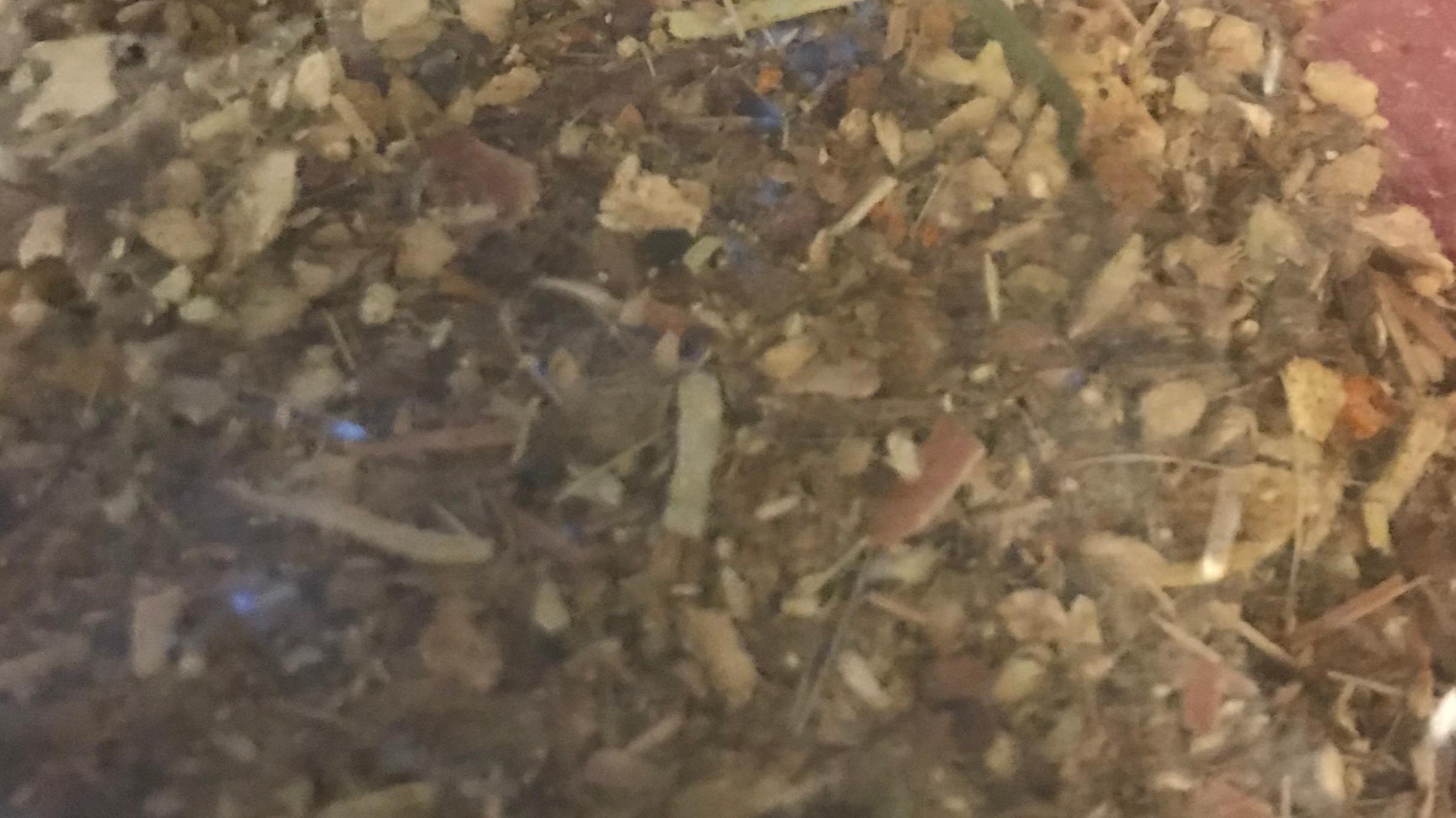 Ground Loose Herbal Tea