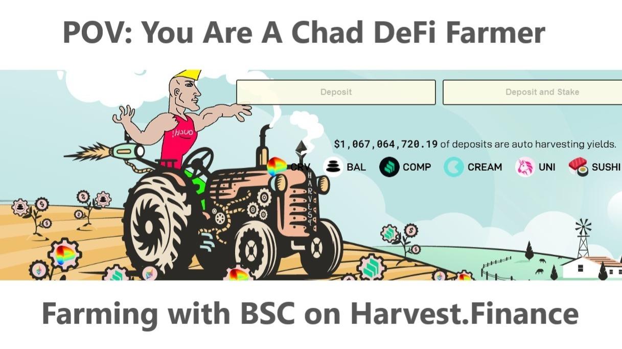 POV: You Are A Chad DeFi Farmer