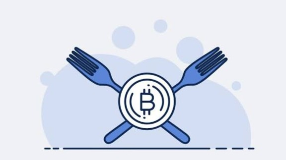 https://www.bitcoinmagazine.com/what-is-bitcoin/what-are-bitcoin-forks