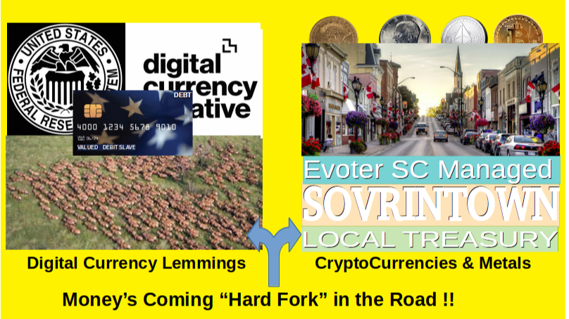 Shaping the Great_Currency_Reset WEC Digital Currency OR Local EVoter Managed SOVRINTown Local Treasury of Cryptos n Metals