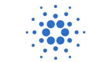 Cardano is ranking 5 right now, will cardano win the competition?