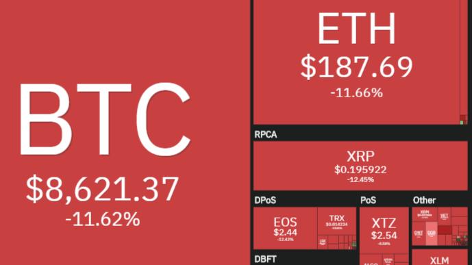 Bitcoin dropped pre halvening