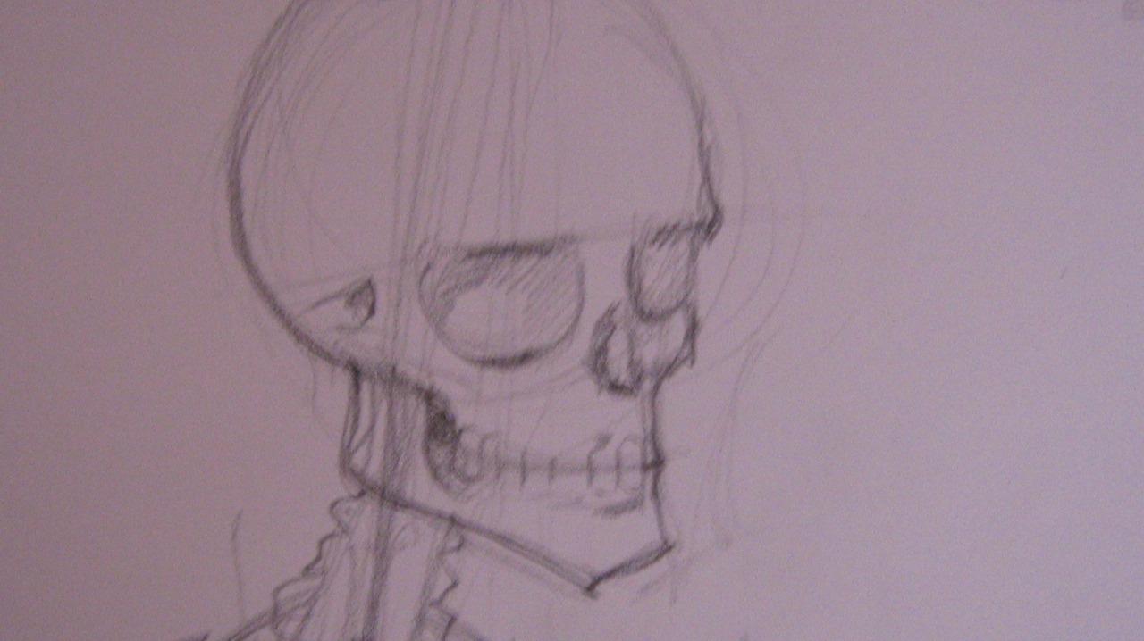 an anatomy study's head