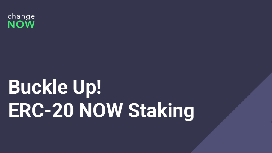 Buckle Up! NOW Token With 25% Annual ROI Is Available for Staking