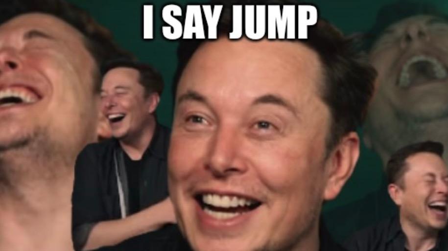 Elon says jump and the markets say how high?