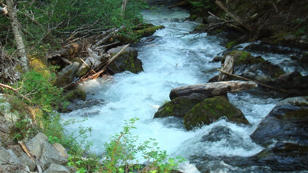 Goals of the Awake Flowing Creek