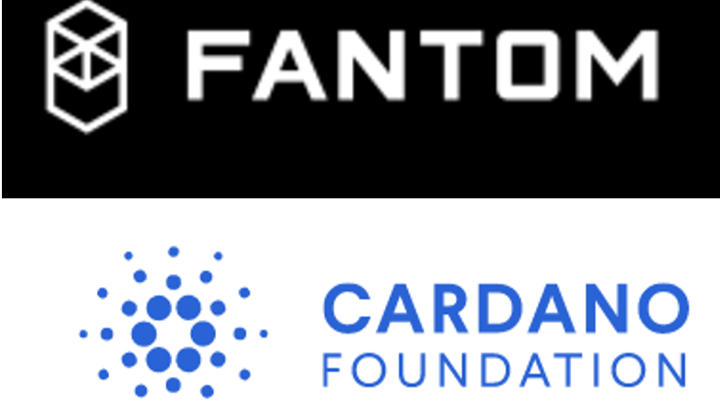 "Fantom and Cardano among the ""Projects better than Bitcoin"""