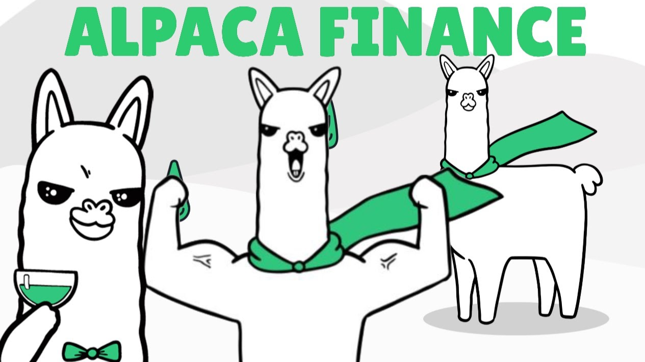 Alpaca Finance: BSC Yield Optimizer and Leveraging your tokens !