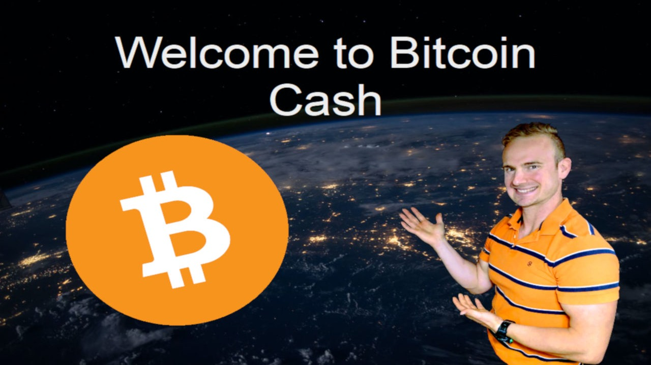 Low Fees and Quick Transactions - An Intro To <bold>Bitcoin</bold> <bold>Cash</bold>!!