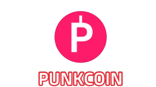 PUNKCOIN (PKC): THE REBEL UNDER CRYPTOCURRENCIES, A DIFFERENT ERC-20 PROJECT