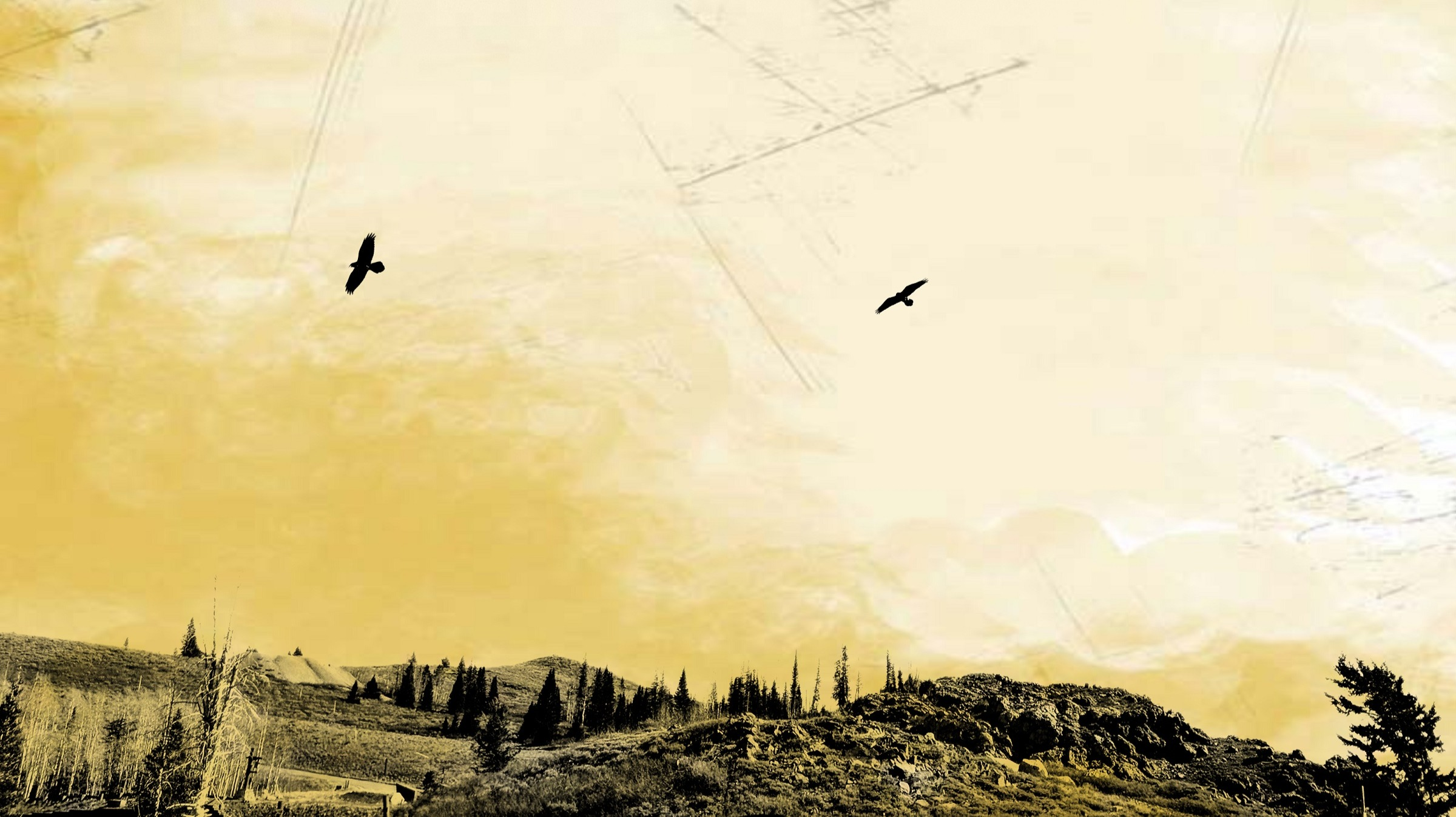Mountains, Sky, Birds