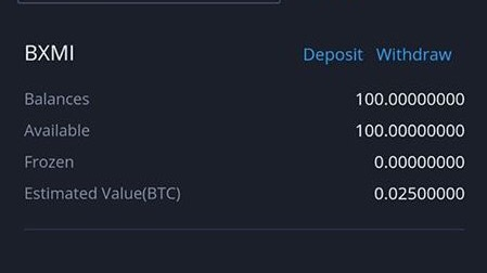 Bitxmi Exchange