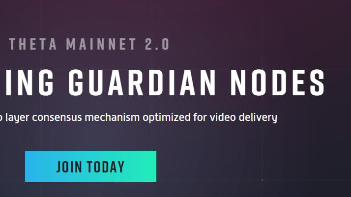Guardian Nodes
