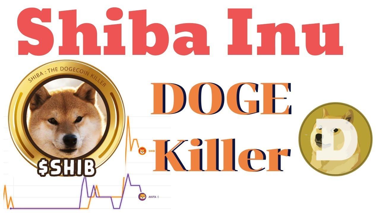 shiba inu coin - photo #12