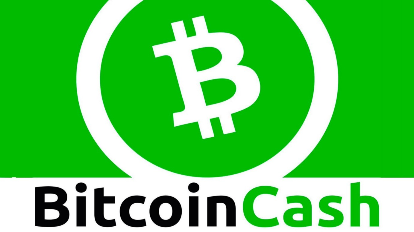 A Beginners Guide to How to Buy Bitcoin cash in India 2021