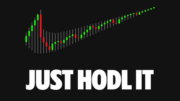 It's HODL not HOLD | What does HODL mean?