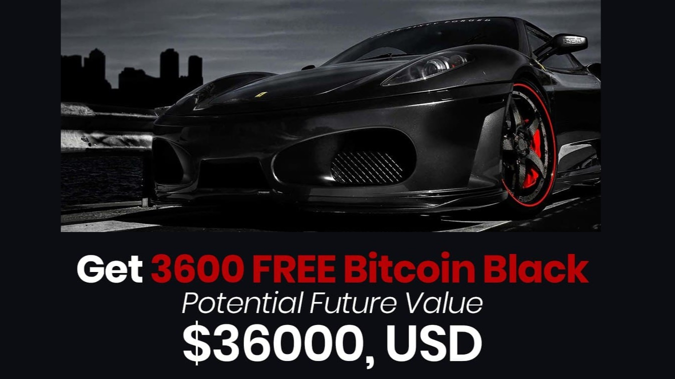 I Read The Bitcoin Black Whitepaper and This Is What I Learned