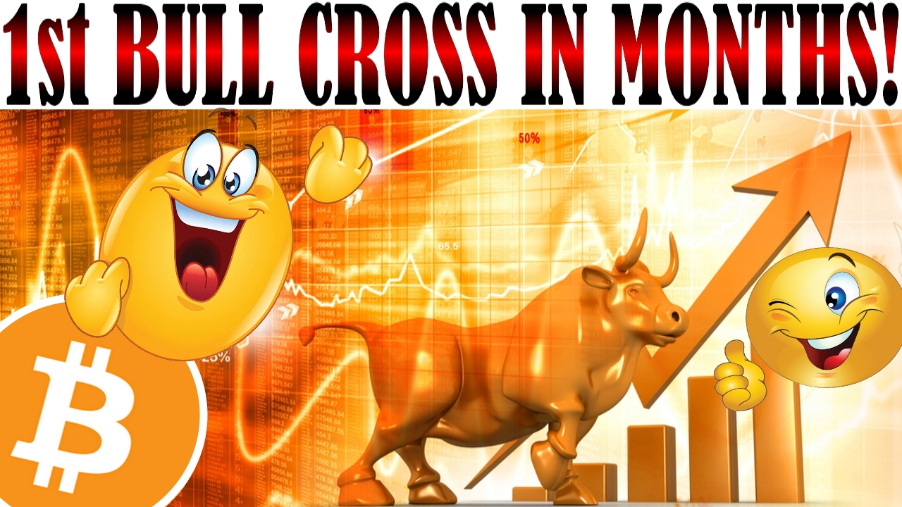 1st Bull Cross in 6 Months!? Tron $20m Airdrop? Ripple $100m